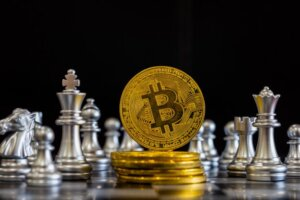 Bitcoin Trader Automated System Is Pre-Set For Actual Profit